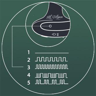 Butt Plug with 5 stimulating vibration patterns